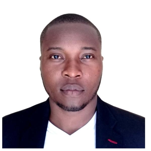 Adeyemi Ogunleye